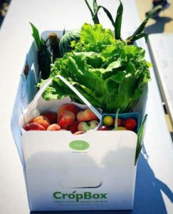 Box of fruits and vegetables from West Oaks Farm Market